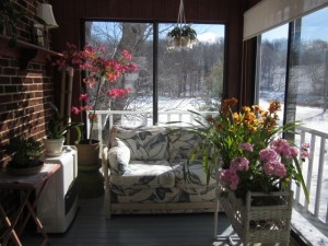 sun room and flowers