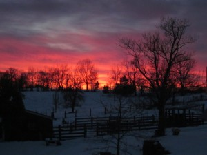 sunset over barnyard