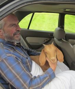 in-car